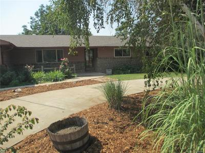 Longmont Single Family Home Active: 12984 Hillcrest Drive