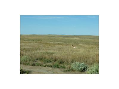 Kiowa CO Residential Lots & Land Active: $159,900