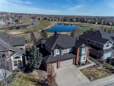 Arvada Single Family Home Under Contract: 16293 West 66th Circle