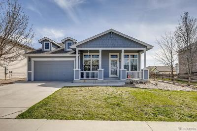 Longmont Single Family Home Active: 2437 Tyrrhenian Drive