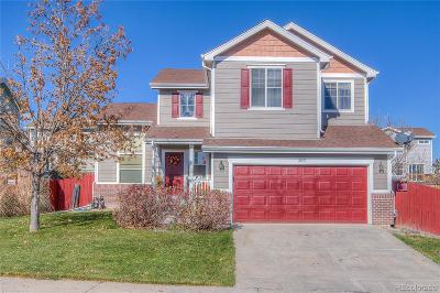 Single Family Home Active: 2053 East 99th Way
