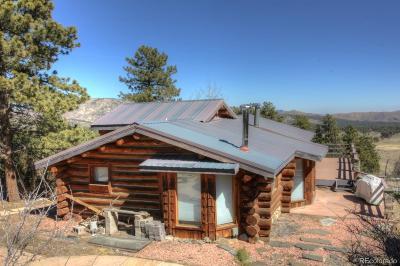 Single Family Home Active: 280 Bobcat Drive