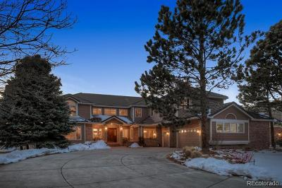 Highlands Ranch Single Family Home Active: 91 Falcon Hills Drive