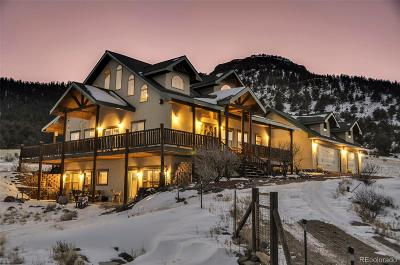 Park County Single Family Home Active: 1256 Meadow Lane