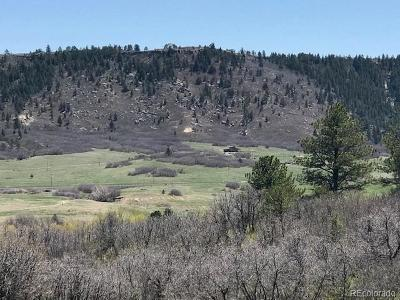 Douglas County Residential Lots & Land Active: 4795 Bear Dance Drive