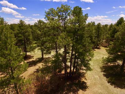 Franktown Residential Lots & Land Active: 2409 South Placer Street