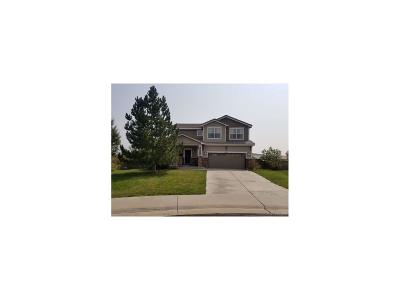 Castle Rock Single Family Home Active: 3915 Miners Candle Court