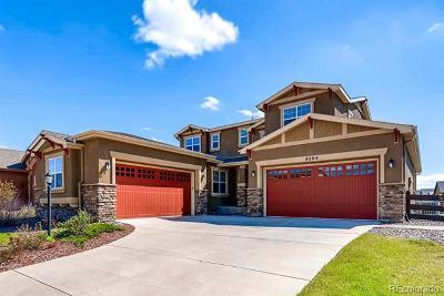 Colorado Springs Single Family Home Active: 9204 Dome Rock Place