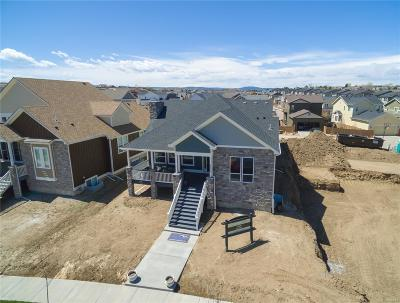 Castle Rock Single Family Home Under Contract: 4314 Fell Mist Way