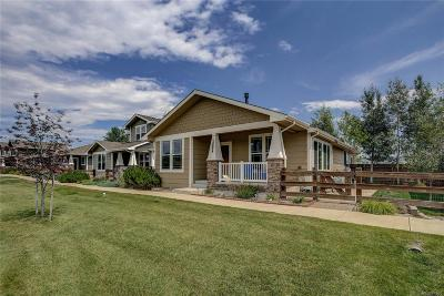 Monument Single Family Home Active: 16857 Buffalo Valley Path