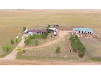 Elbert County Single Family Home Under Contract: 22150 County Road 201