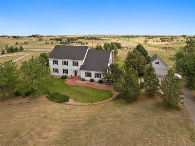 Elbert County Single Family Home Under Contract: 46680 Indian Brush Court