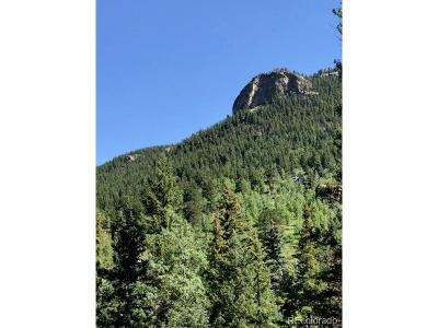Evergreen Residential Lots & Land Active: 1a Witter Gulch Road