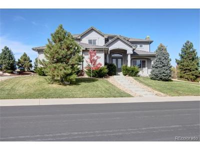 Castle Rock Single Family Home Active: 1067 Cinnabar Drive