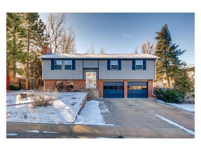 Castle Rock Single Family Home Under Contract: 118 Elm Avenue