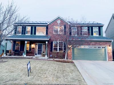 Highlands Ranch Single Family Home Active: 9710 Townsville Circle