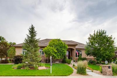 Arvada Single Family Home Under Contract: 5772 Yank Street