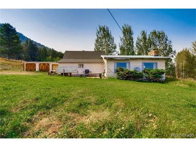 Evergreen Single Family Home Active: 32183 Snowshoe Road