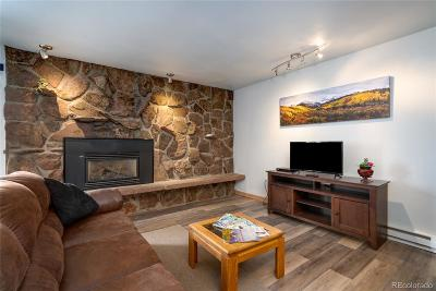Steamboat Springs Condo/Townhouse Active: 2235 Storm Meadows Drive #312