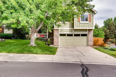 Eastridge Single Family Home Active: 6804 Amherst Court