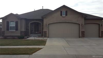 Colorado Springs Single Family Home Active: 6287 Adamants Drive