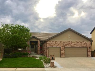 Arvada Single Family Home Under Contract: 7149 Russell Court