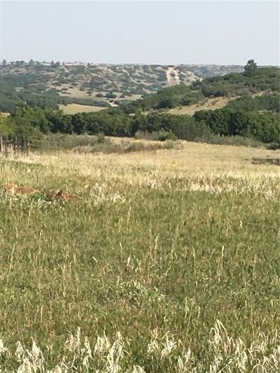 Castle Rock Residential Lots & Land Active: 3947 Augustine Court