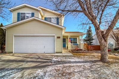 Boulder County Single Family Home Active: 1272 Red Mountain Drive