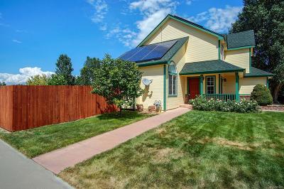 Mead Single Family Home Active: 157 Eagle Avenue