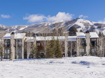 Steamboat Springs CO Condo/Townhouse Active: $219,000