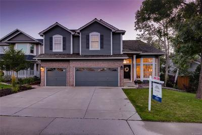 Douglas County Single Family Home Active: 9866 Cypress Point Circle
