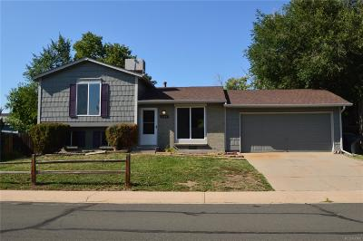 Single Family Home Active: 3143 East 96th Place