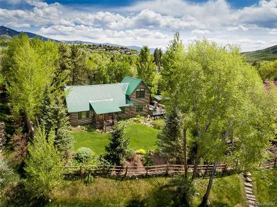 Steamboat Springs Single Family Home Active: 361 Sky Lane