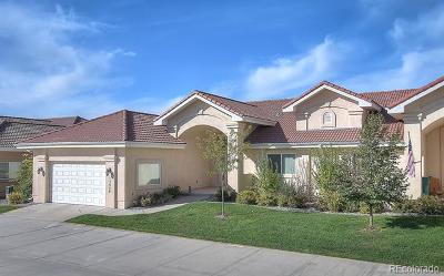 Colorado Springs Single Family Home Active: 13958 Paradise Villas Grove