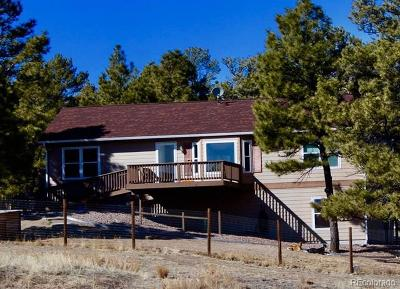 Deer Trail Single Family Home Active: 40285 Sapphire. Trail
