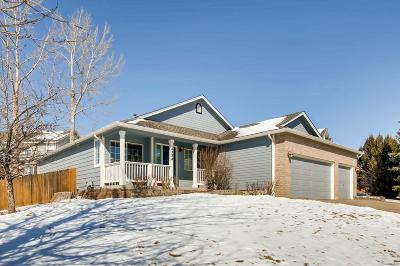 Centennial Single Family Home Under Contract: 5358 South Liverpool Way