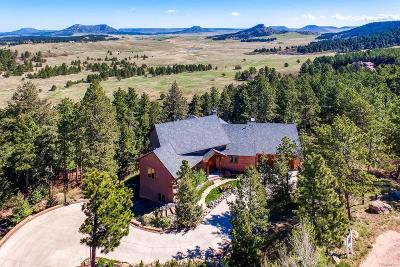 Larkspur Single Family Home Under Contract: 870 Yarnell Drive