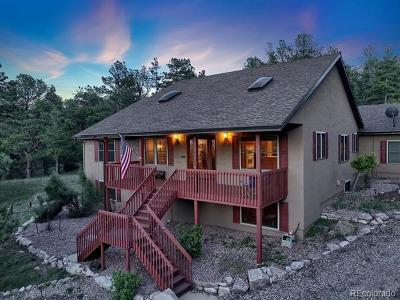 Single Family Home Active: 18035 Starved Rock Lane