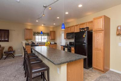 Parker Condo/Townhouse Active: 9557 Pearl Circle #203