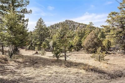 Jefferson County Residential Lots & Land Active: 6055 Meadow Drive