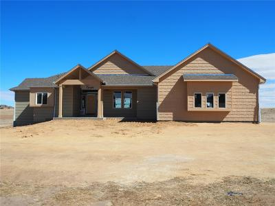 Elbert County Single Family Home Under Contract: 37690 Wild Horse Trail