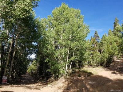 Residential Lots & Land Active: South Spring Gulch Road