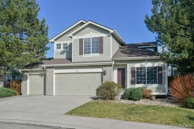 Arvada Single Family Home Active: 7014 Pike Court