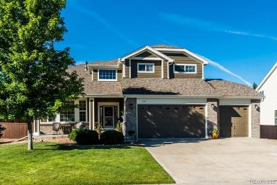 Sapphire Pointe Single Family Home Under Contract: 858 Kryptonite Drive