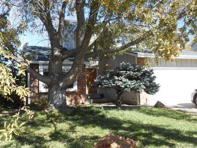 Arapahoe County Single Family Home Active: 5146 South Yampa Circle