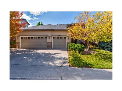 Highlands Ranch Single Family Home Active: 2609 Pemberly Avenue