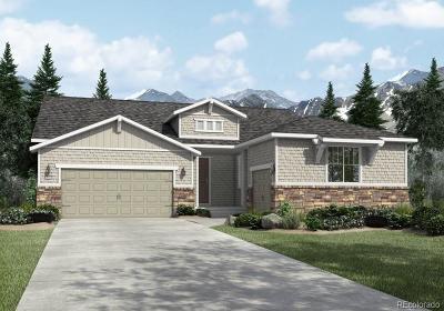 Elizabeth Single Family Home Under Contract: 42068 North Pinehurst Circle