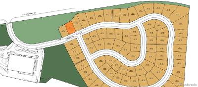 Residential Lots & Land Active: 27354 Brandon Circle