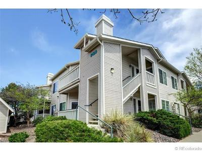 Highlands Ranch Condo/Townhouse Sold: 8420 Little Rock Way #204
