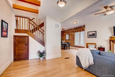 Denver Single Family Home Active: 2350 North Lafayette Street